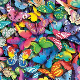 butterflies mariposas freetoedit
