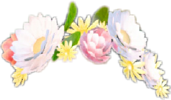 snapchat flowercrown freetoedit
