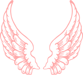 wings pink angel freetoedit