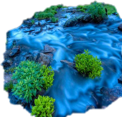 sticker water stream river plants