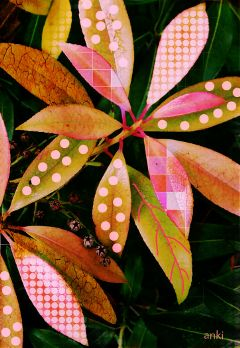 wappatternsonplants