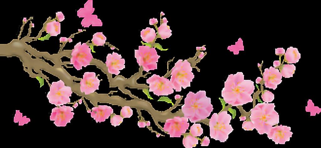 #flower #freetoedit