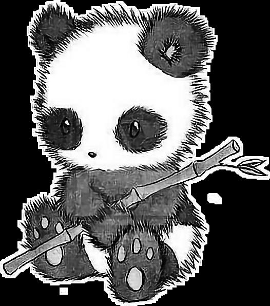 Panda Cutee Desenho Tumblr Sticker By Maira Costa