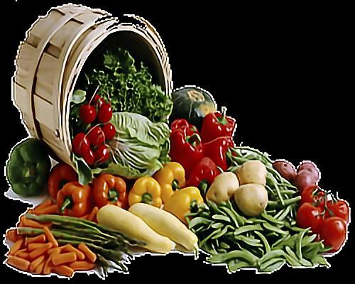 #sticker#fruits#vegetables#nature#freetoedit