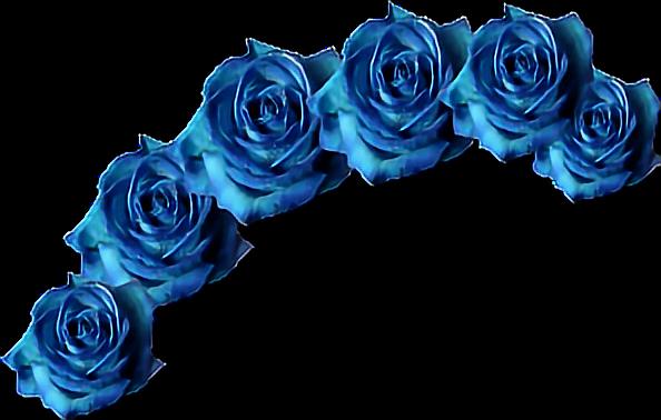 Corona Flores Sinfondo Sticker By Arinikiforov