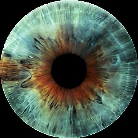#FreeToEdit  #eye #olhos #lentes
