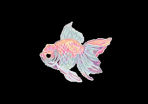 #fish #magic #pastel #ftestickers #freetoedit