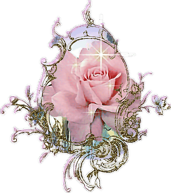 #mirror #rose #pinkrose #golden #pink #cute #kawaii #art #pastel #pinkpastel #cutie #angel #angelic #baby #love #flower #garden #freetoedit