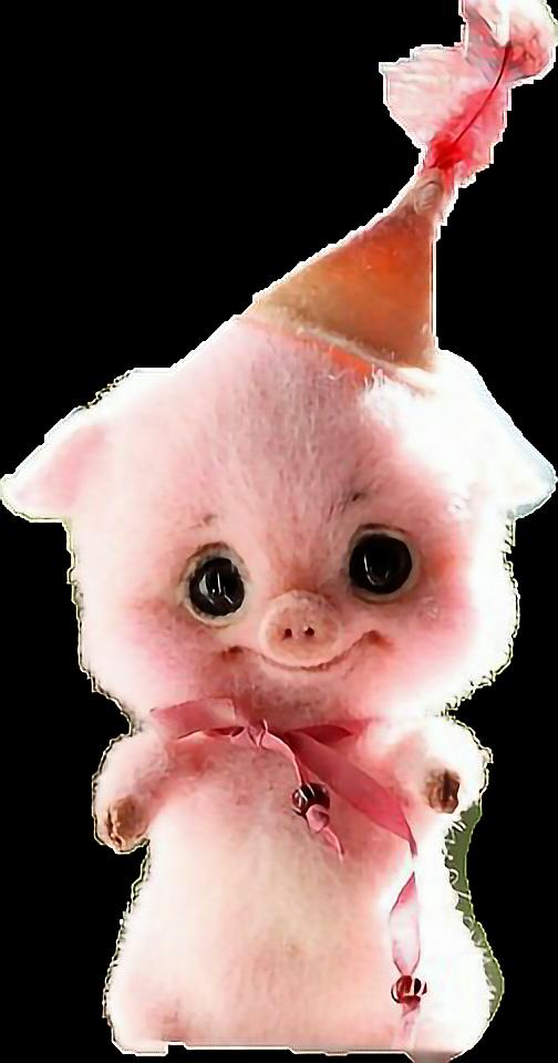 #pig #happy #birthday