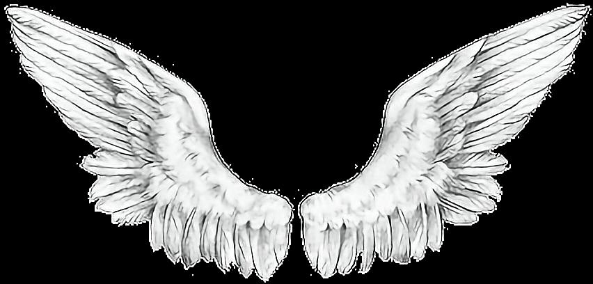 #wings #angelwings#freetoedit #ftewings