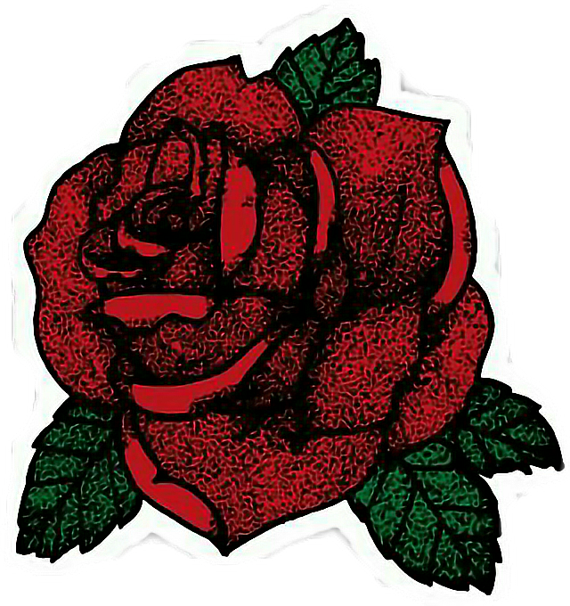 pretty red roses tumblr 76378 movieweb