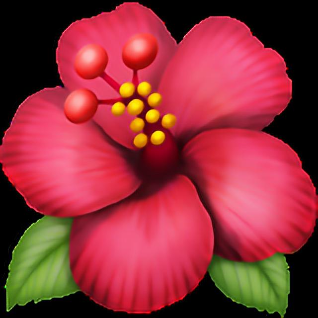 •Flower emoji 🌺 flower emoji emoticon iphone iphoneemo