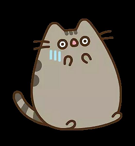 Scary Pusheen Cat Kitty Cute Tumblr