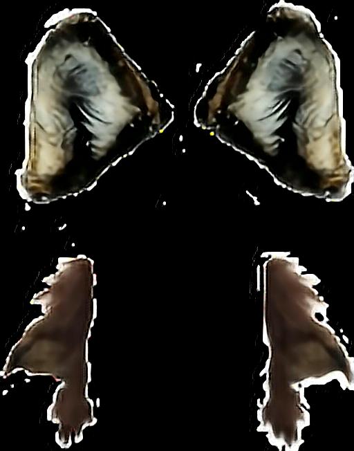 #muttonchops #sideburns ##ftestickers  #ears #overlays  #filter #werewolf  #costumesticker #horror #creepy  #makeup #costume #bodyparts #animalstickers  #photomanipulation #photomanip  #halloween
